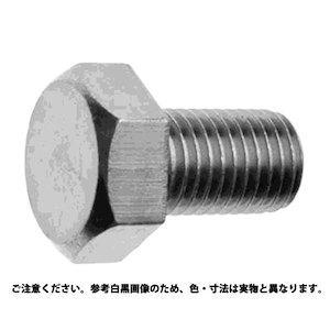 サンコーインダストリー 六角ボルト(全ねじ)(細目・P1.5) 24X100【smtb-s】
