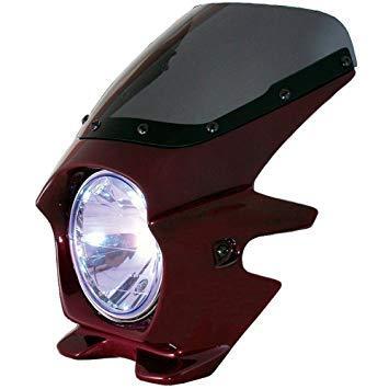 ブラスター2(BLUSTER2) Nプロジェクト BLUSTER Z900RS '18 Cトーンブラウン(エアロ) 91265【smtb-s】