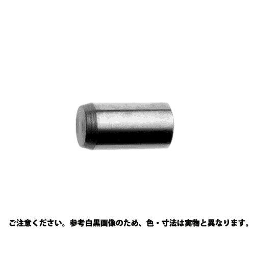 サンコーインダストリー 平行ピンA種 m6 材質(ステンレス) 規格(5 X 100) 入数(100)【smtb-s】