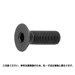 サンコーインダストリー 皿CAP(アンブラコ 6 X 40【smtb-s】