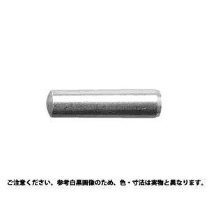 サンコーインダストリー 内ネジ テ-パ-ピン(大喜多製 10 X 40【smtb-s】