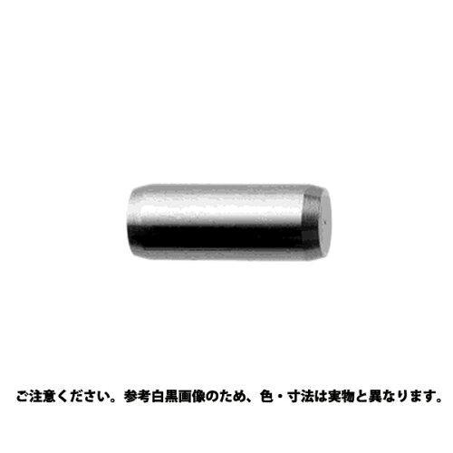 サンコーインダストリー 平行ピンB種 h7 材質(ステンレス) 規格(6 X 10) 入数(500)【smtb-s】