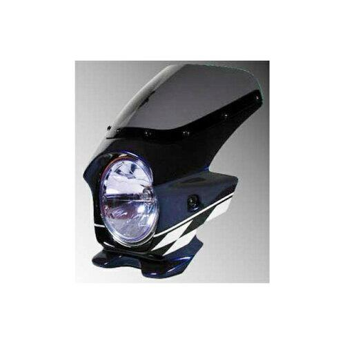 N PROJECT 90016 BLUSTERII XJR1300 '07 DグレーメタリックB (エアロ)【smtb-s】