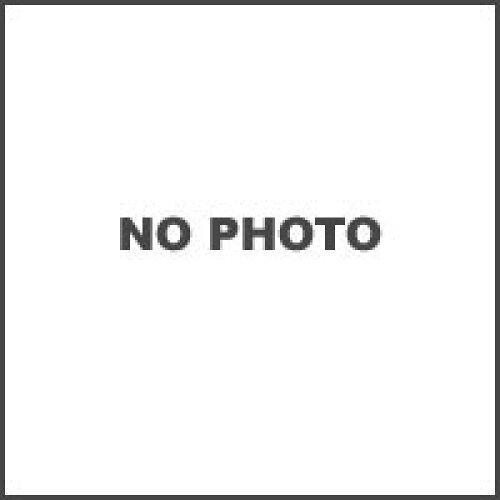 EARLS/14053242 ビッグラジエーター用 OILクーラーホースSET ラウンド #6 9-13R V-MAX -95/96-【smtb-s】