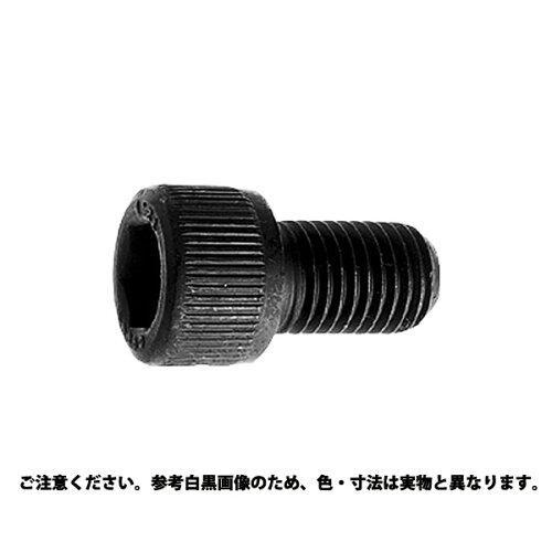 サンコーインダストリー 六角穴付きボルト(キャップスクリュー)(その他細目) 24 X 40【smtb-s】