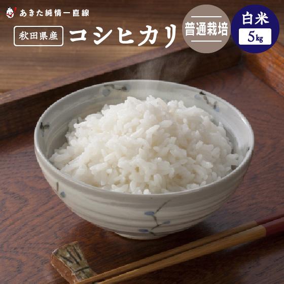【令和1年産】《普通栽培》《白米》秋田県産 コシヒカリ 25kg(5kg×5)【生産者直送】〈三郎米〉