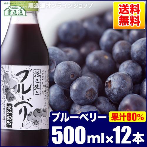 送料無料 果汁80%!ブルーベリー 500ml×12本入りセット 順造選 ブルーベリージュース 【楽ギフ_のし】
