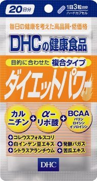 DHC ダイエットパワー 20日分 定形外配送可 直営限定アウトレット テレビで話題 DHCダイエットパワー