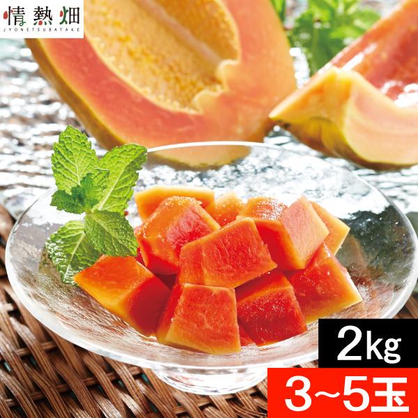 パパイヤ フルーツ 種なし 石垣島産2kg(3~5玉)送料無料 沖縄産石垣珊瑚 果物 国産 ギフト