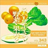 送料無料!MIXA IMAGE LIBRARY Vol.343 スーパーリアルイラスト 野菜・果実2