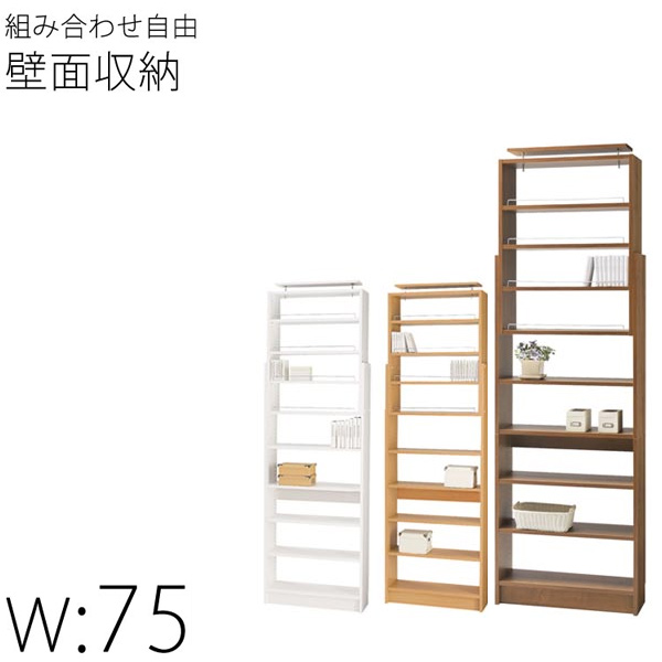 Arrange Non Bacterial Meningitis Bookshelf Width 75 Cm