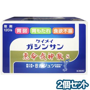 【第2類医薬品】 恵命我神散S 120包×2個セット