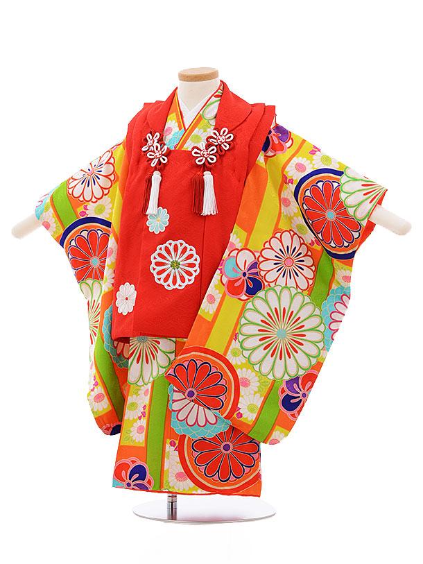 レンタル 七五三 着物 3歳 被布 セット 正絹 3391 紅一点 赤×オレンジ地 菊 新品足袋 プレゼント 往復送料無料