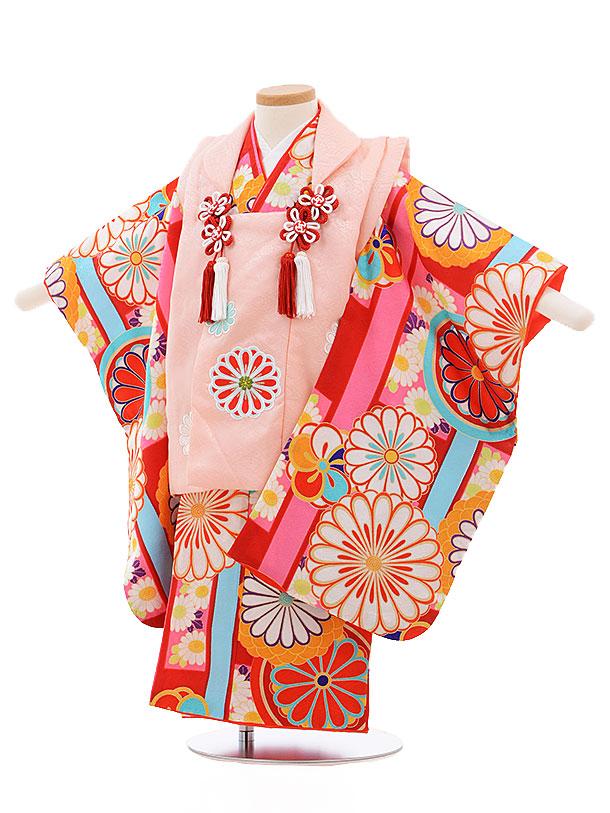 レンタル 七五三 着物 3歳 被布 セット 正絹 3392 紅一点 ピンク×赤地 菊 新品足袋 プレゼント 往復送料無料