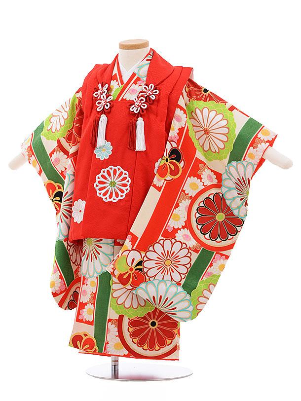 レンタル 七五三 着物 3歳 被布 セット 正絹 3393 紅一点 赤×クリーム地 赤菊 新品足袋 プレゼント 往復送料無料