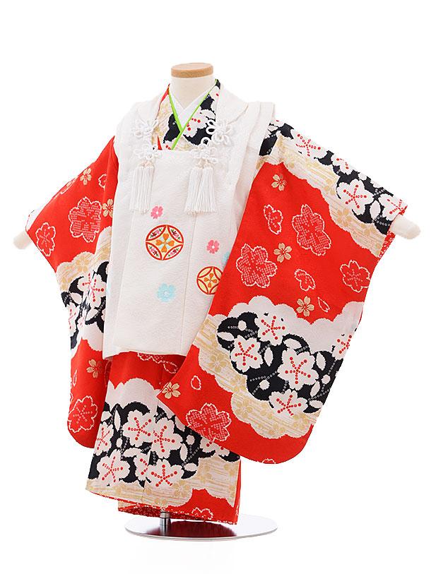 レンタル 七五三 着物 3歳 被布 セット 正絹 3403 白×赤地 雲取り 桜 新品足袋 プレゼント 往復送料無料