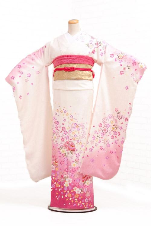 [租借服装]长袖和服租赁320白×薄粉红樱花nimari[婚礼][毕业典礼][全套][rental][长袖和服][长袖和服安排]