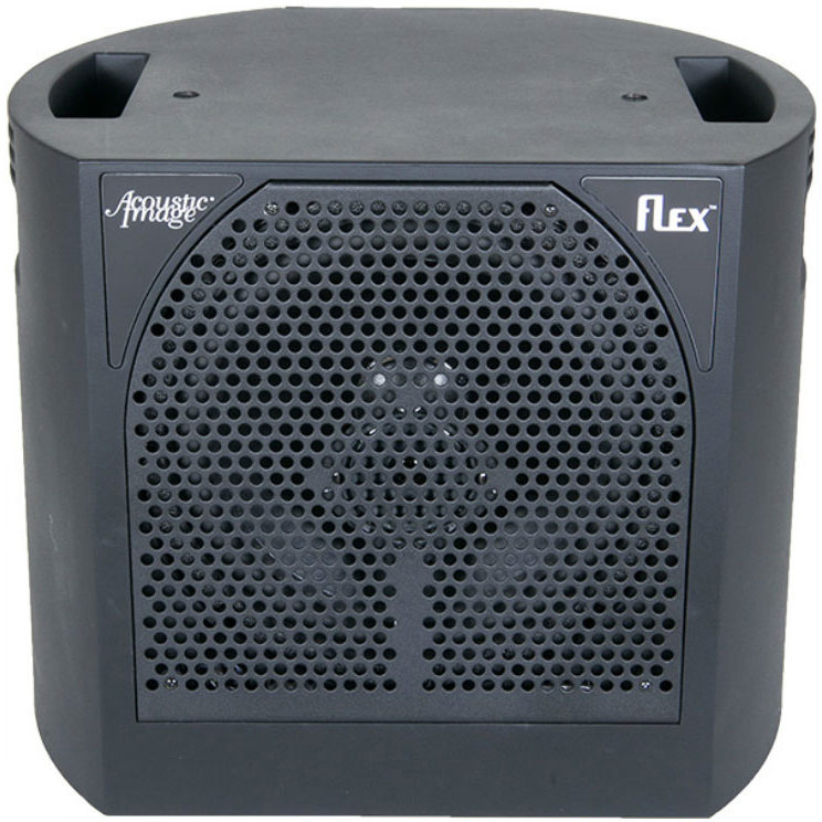 Acoustic Image 660PS Flex Cab 650w Tri-amped Powered Cabinet《パワードキャビネット》【送料無料】