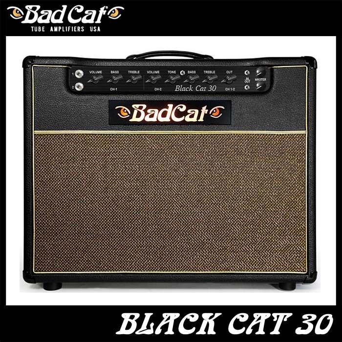 Bad Cat Black Cat 30 《ギターコンボアンプ》【送料無料】