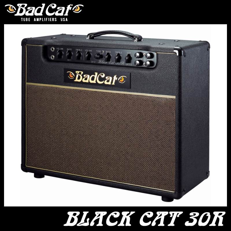 Bad Cat Black Cat 30R 《ギターコンボアンプ》【送料無料】