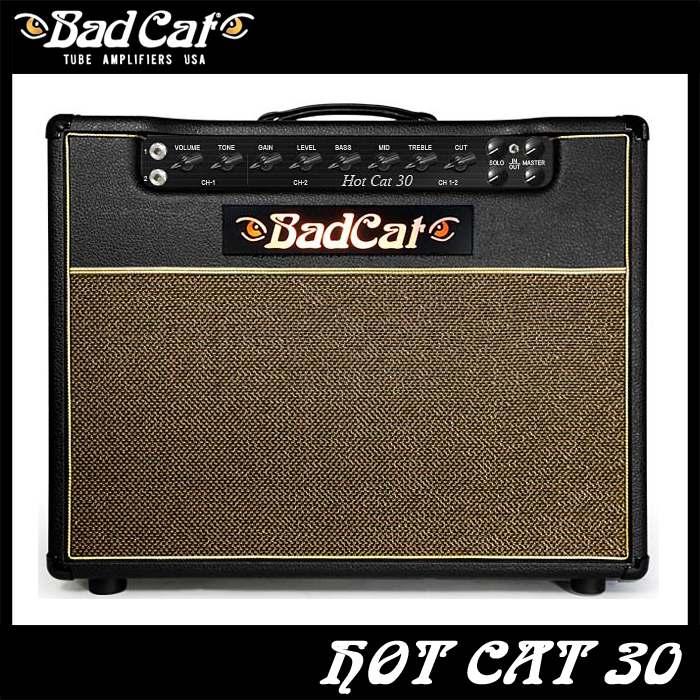 Bad Cat Hot Cat 30 《ギターコンボアンプ》【送料無料】