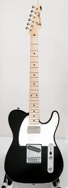 ESP RON WOOD SIGNATURE MODEL (Black)【送料無料】【受注生産品】