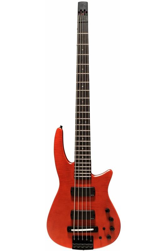 NS Design RADIUS5 Bass (Amber Satin)《ベース》【送料無料】