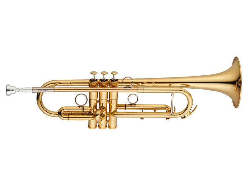 正規品販売! XO T Trumpet Series T Series RVT-GL ライトウェイト仕様 イエローブラスベル RVT-GL/ゴールドラッカー仕上げ 《B♭トランペット》【送料無料】, 宮城県:cc522a53 --- konecti.dominiotemporario.com