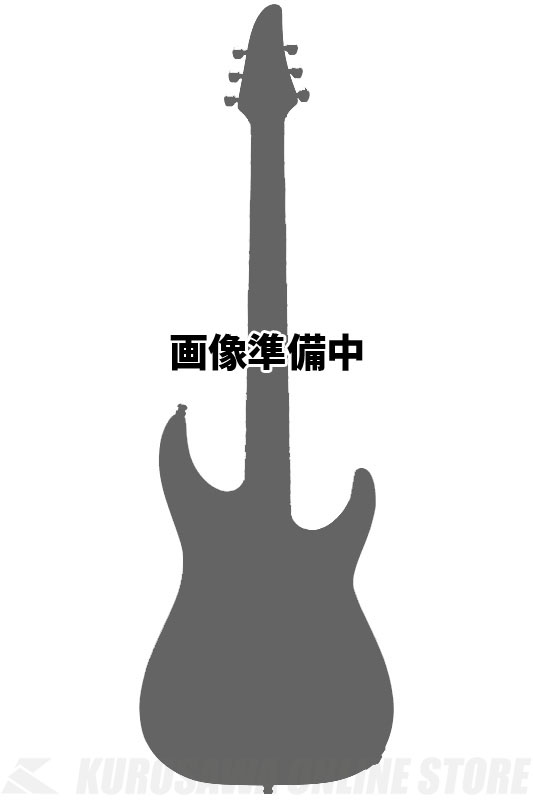 ESP HORIZON-PT FR Obsidian (White Pearl Black) 《エレキギター》【受注生産品】【送料無料】