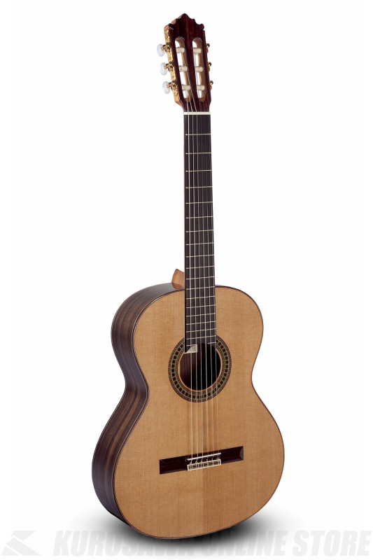 Paco Castillo Classic 204 《クラシックギター》 【送料無料】