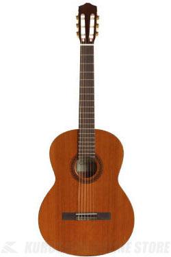 CORDOBA GUITARS Iberia C5《クラシックギター》【送料無料】(ご予約受付中)