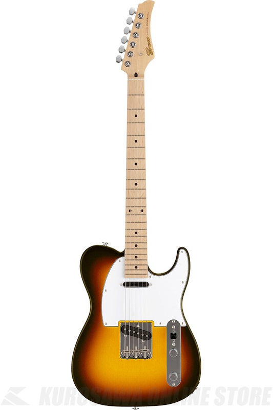 Greco WST-STD (Sunburst / Maple Fingerboard) 《エレキギター》【日本製】【送料無料】