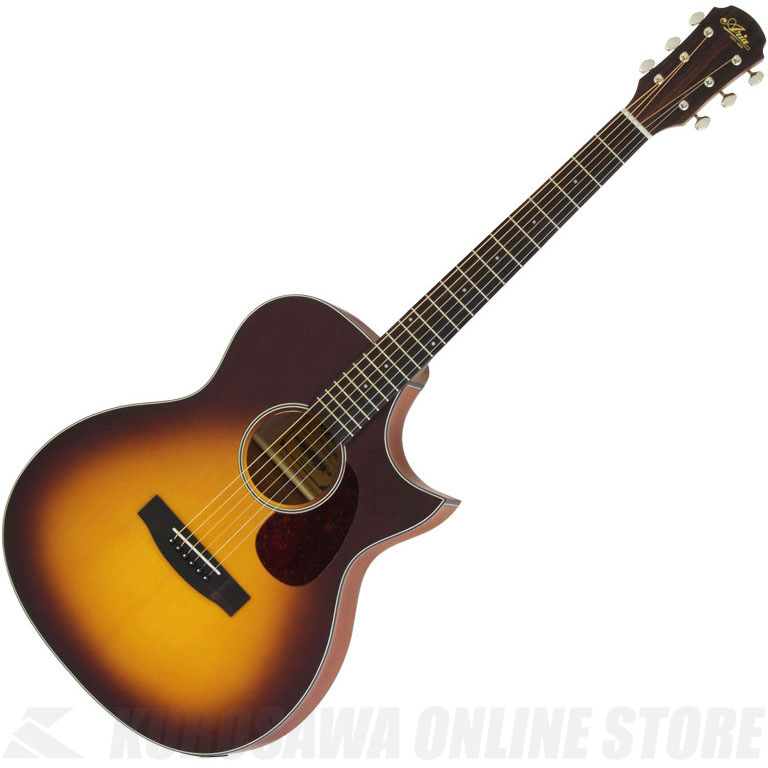 Aria Aria-101CE MTTS (アコースティックギター/エレアコ)(送料無料)