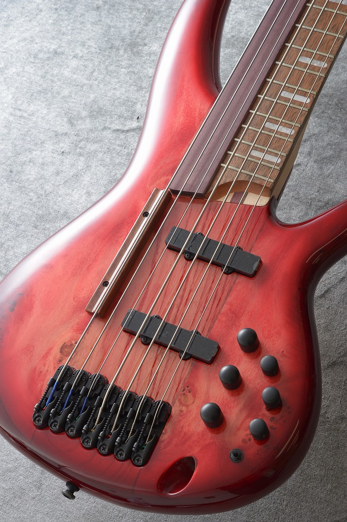 Ibanez SRAS7-RSG (Raspberry Stained Burst Gloss) , SPOT MODEL【限定生産品】