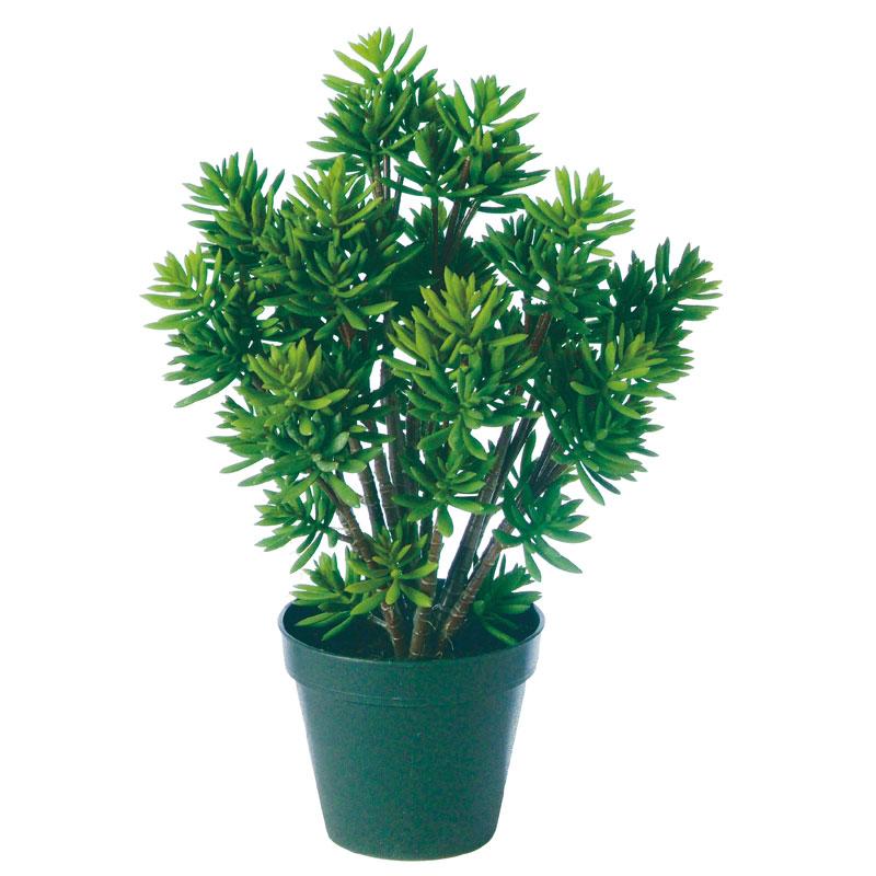 【観葉植物 造花】エケベリアエギュー 48cm(SC(CT)触媒・光触媒/インテリア/お祝い)【フェイクグリーン 観葉植物 造花 カジュアルポット】