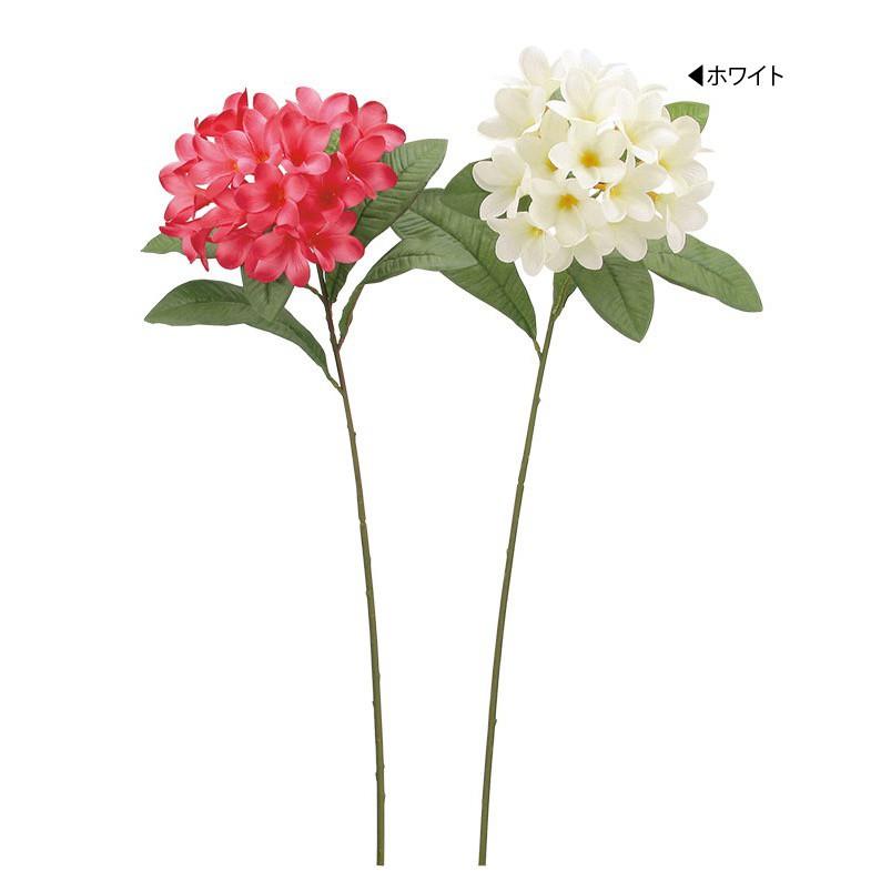お正月 年始 店内装飾 グッズ ウィンター 冬 正月 贈答 A-B 造花 ホワイト 安心の実績 高価 買取 強化中 プルメリア×17
