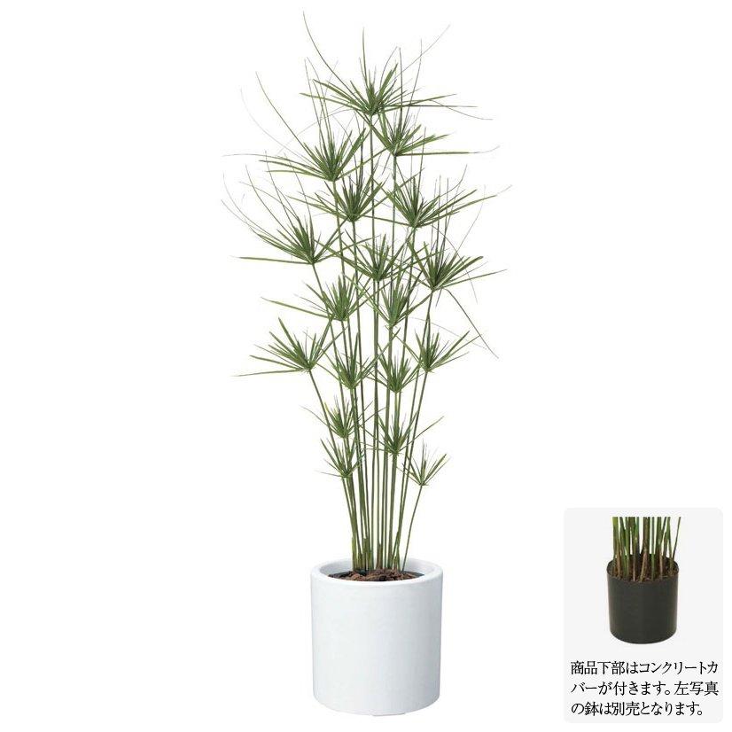 【フェイクグリーン】キプロスツリー 160cm 【観葉植物 造花 大型 人工観葉植物 光触媒 CT触媒 インテリア】[G-L]