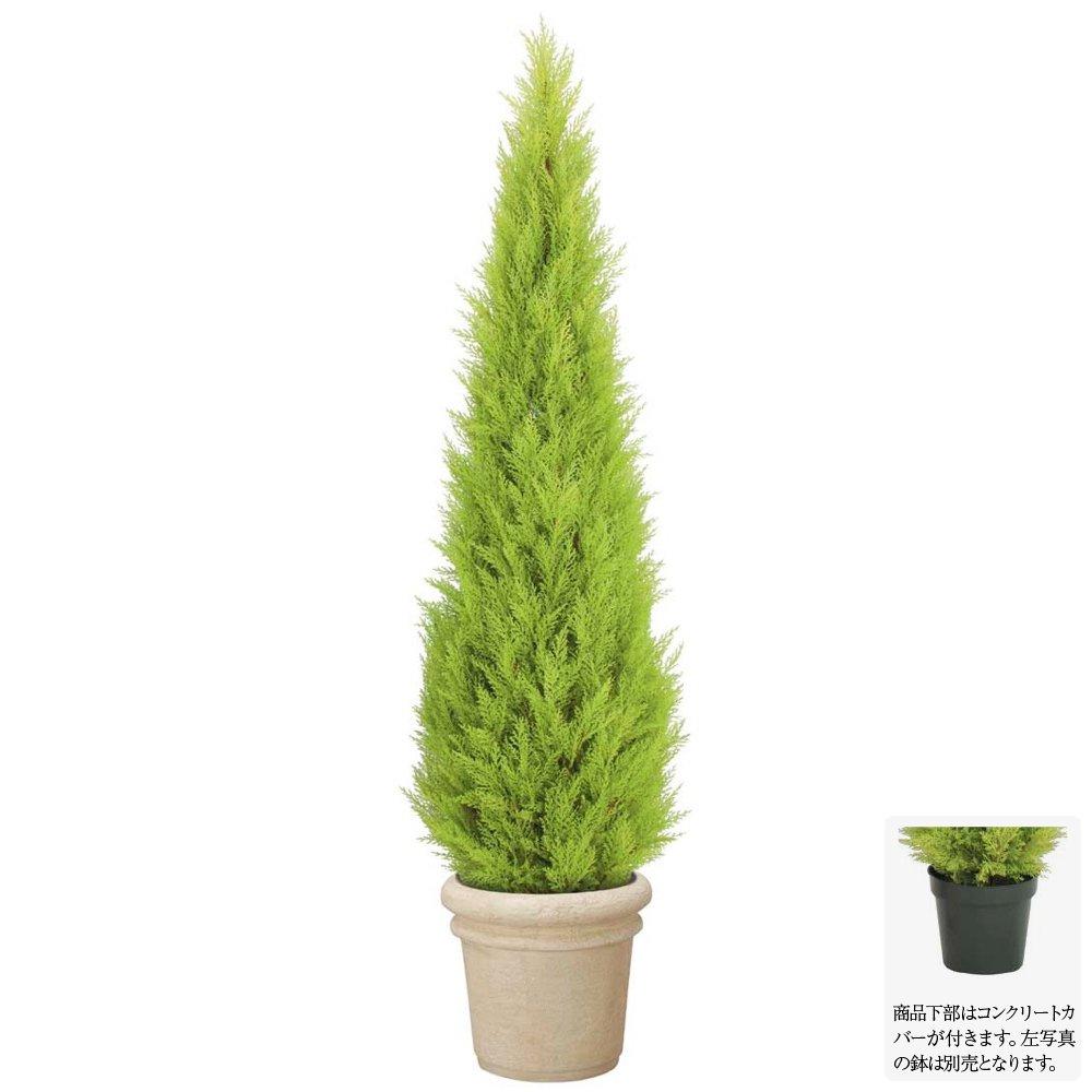 【フェイクグリーン 大型】屋外対応 180cmゴールドクレストツリー 【観葉植物 造花 人工観葉植物 光触媒 CT触媒 庭 ガーデン】[G-L]