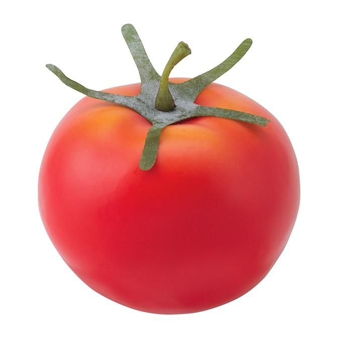 フレッシュトマト(12ヶ/パック) 食品サンプル[G-L]