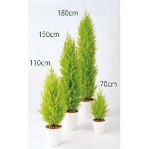 【観葉植物 フェイクグリーン】ゴールドクレストツリー ライトグリーン70cm 鉢植(SC(CT)触媒・光触媒/インテリア/お祝い)