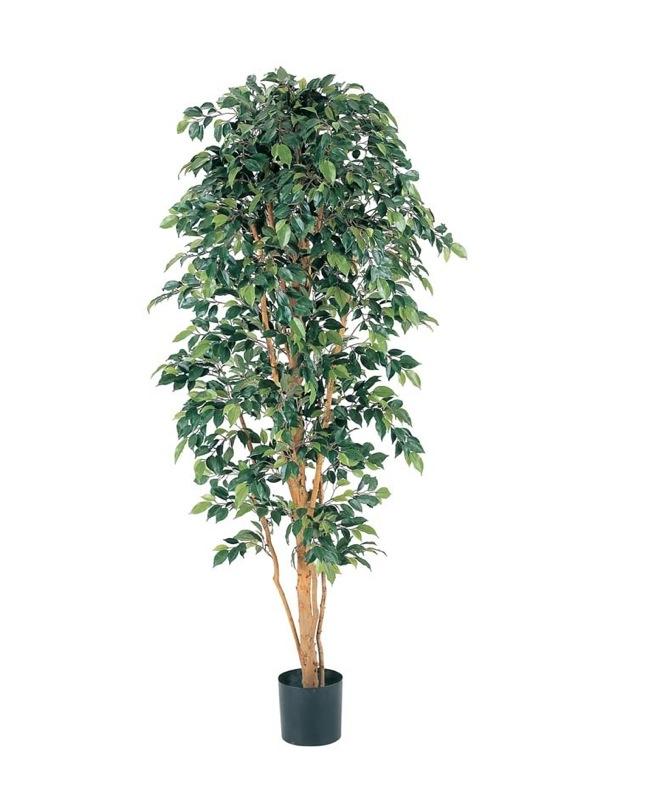 【フェイクグリーン 大型】フィカスツリー 180cm(ナチュラルトランク)【観葉植物 造花 CT触媒/光触媒 フェイク グリーン】[D-F]
