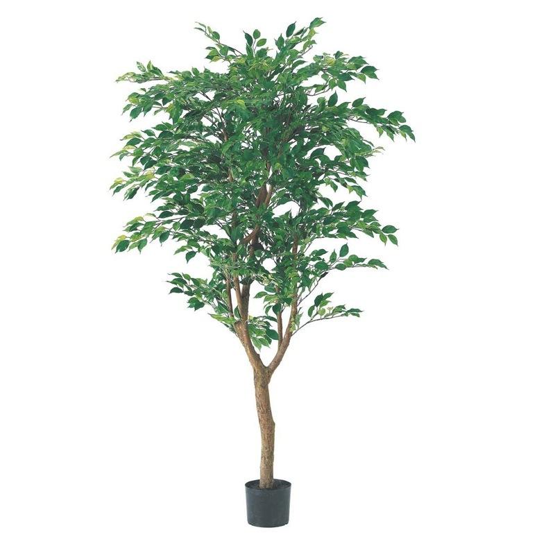 フィカスツリー 150cm(ナチュラルトランク/2255)【観葉植物 造花 大型 フェイクグリーン CT触媒/光触媒】[D-F]