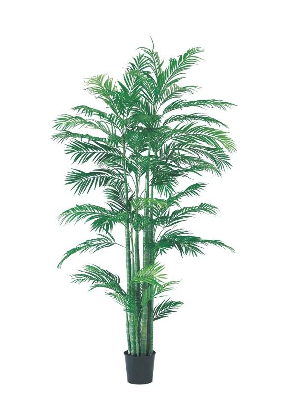 【フェイクグリーン 大型】アレカパームツリー 210cm【観葉植物 造花 CT触媒/光触媒 フェイク グリーン】[D-F]