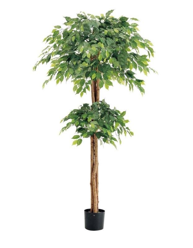 【フェイクグリーン 大型】ダブルフィカスツリー 180cm(ナチュラルトランク)【観葉植物 造花 CT触媒/光触媒 フェイク グリーン】[D-F]
