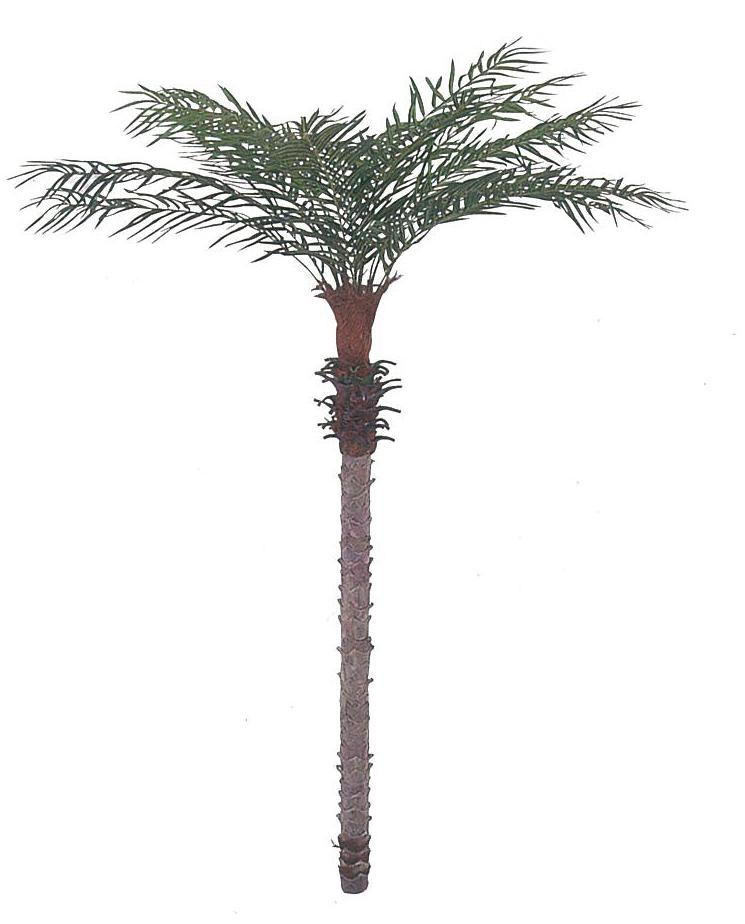 【フェイクグリーン 大型】フェニックスパーム 210cm【観葉植物 造花 SC(CT)触媒 フェイク グリーン】