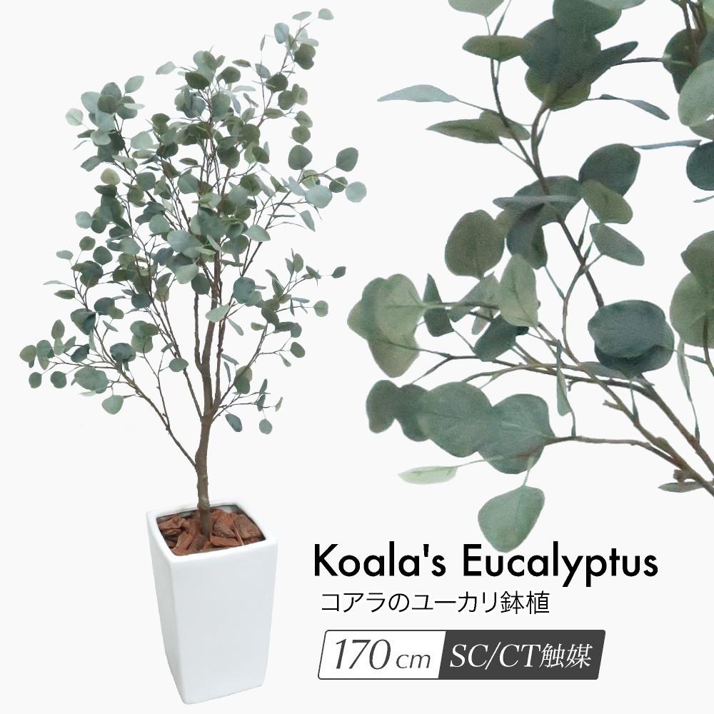 人工観葉植物 フェイクグリーン 観葉植物 造花 光触媒 コアラのユーカリ 170cm 鉢植 フェイク グリーン インテリア おしゃれ CT触媒 お祝い