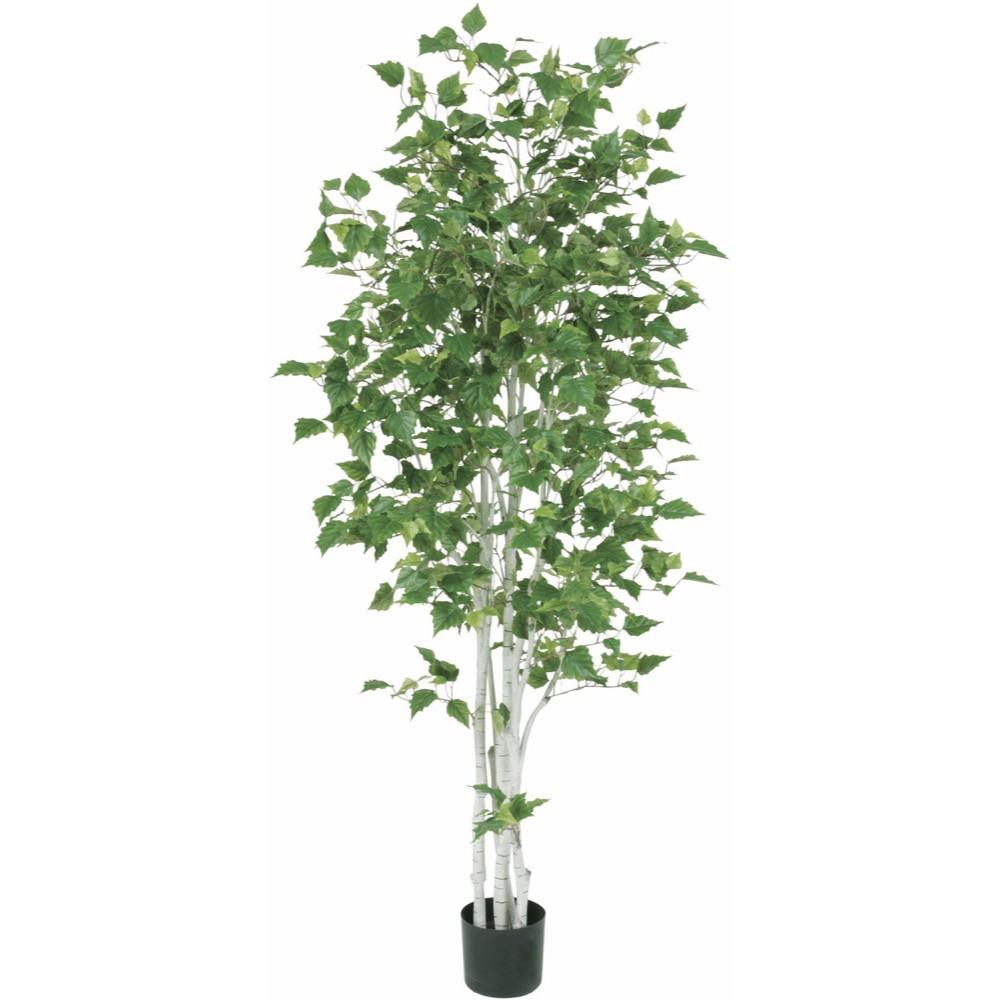 【人工観葉植物 大型】シラカバ 180cm 白樺 樹木 【観葉植物 造花 フェイクグリーン 光触媒 CT触媒 インテリア】