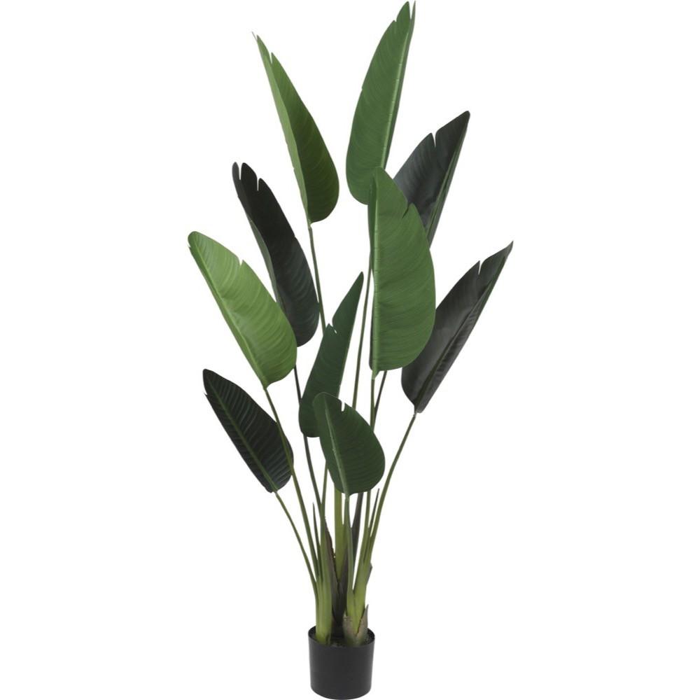 【観葉植物 造花】オーガスタ 153cm 樹木 【フェイクグリーン 大型 人工観葉植物 光触媒 CT触媒 インテリア】