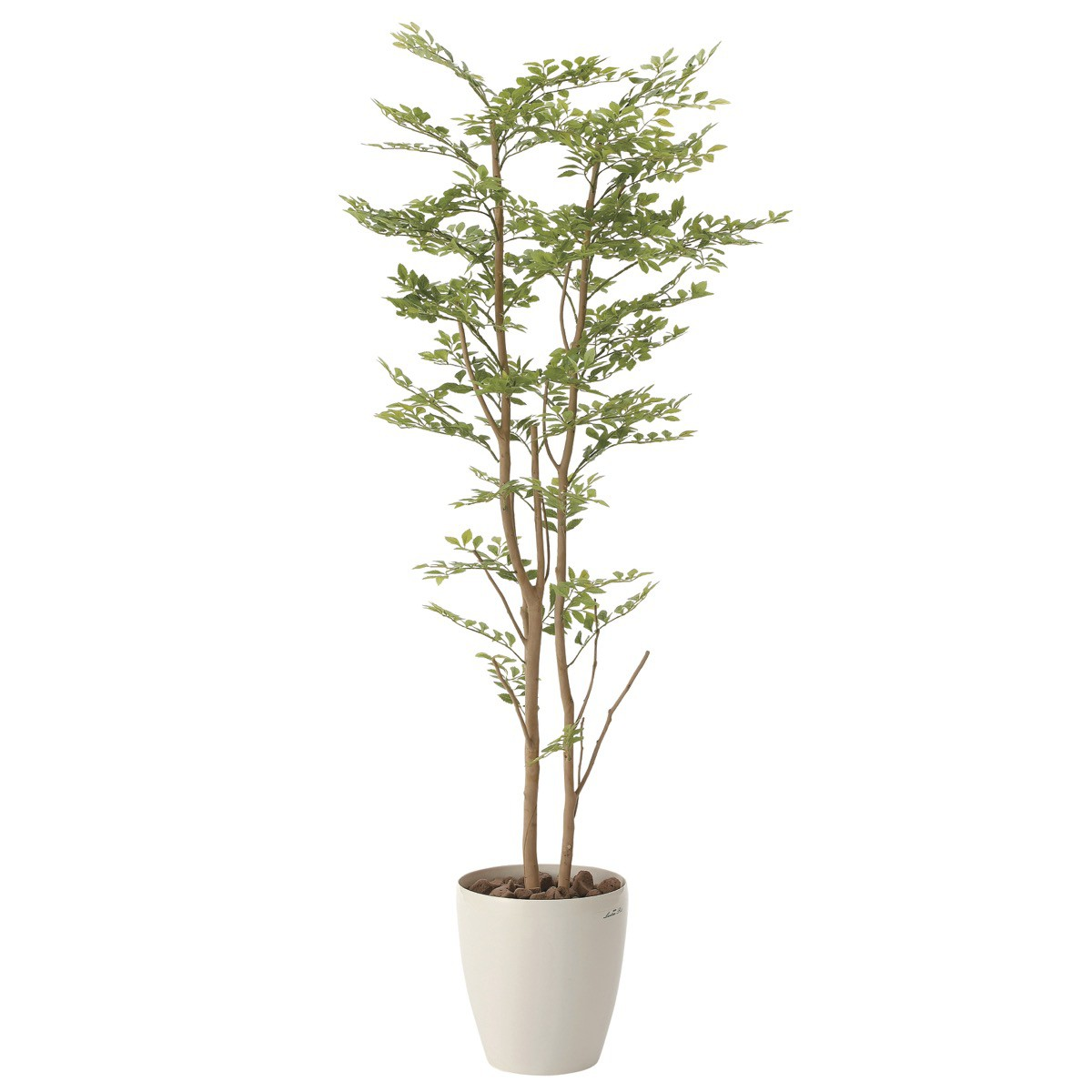 人工観葉植物 フェイクグリーン 観葉植物 造花 ゴ-ルデンリ-フ 160cm 鉢植 光触媒 インテリア おしゃれ フェイク グリーン