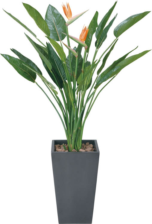 【送料関税無料】 アートストレリチアハナツキ1.6M ブラック:フェイクグリーンの神戸花物語-花・観葉植物
